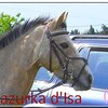 Mazurka-d-Isa